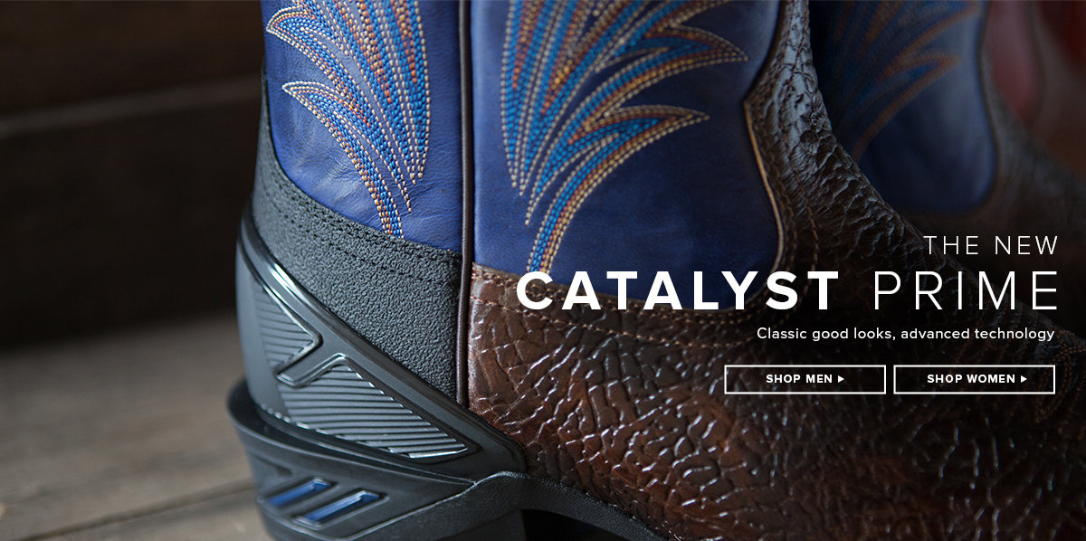 The New Catalyst Prime - Class Good Looks, Advanced Technology
