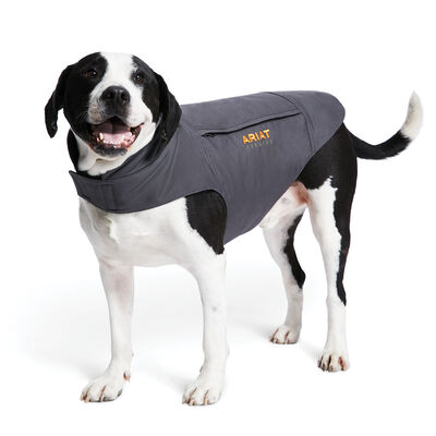 Rebar DuraCanvas Insulated Dog Jacket