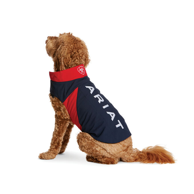 Team Softshell Dog Jacket